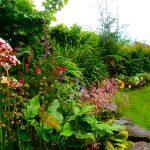 cerdyn villa garden
