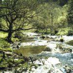 Washpools, Pwll Bo, River Irfon