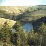 Abergwesyn Valley, Llyn Brianne