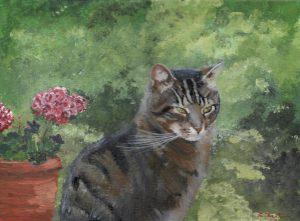 Cat portrait by Berni. The loss of a pet cat